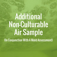 Additional Non-Culturable Air Sample