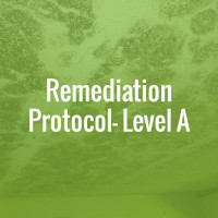Remediation Protocol - Level A