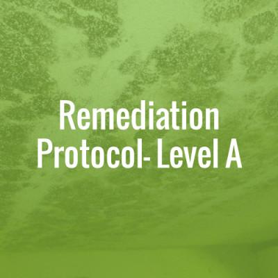 Remediation Protocol - Level A