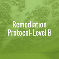 Remediation Protocol - Level B