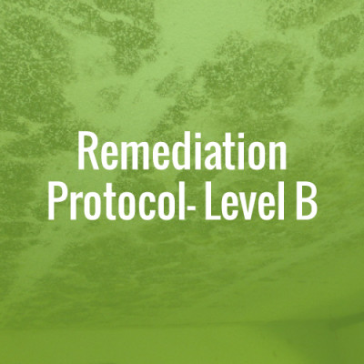 Remediation Protocol - Level B
